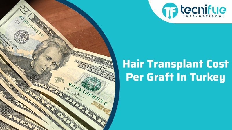 Hair Transplant Cost Per Graft In Turkey, Hair Transplant Cost Per Graft In Turkey
