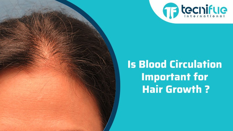 Is Blood Circulation Important For Hair Growth